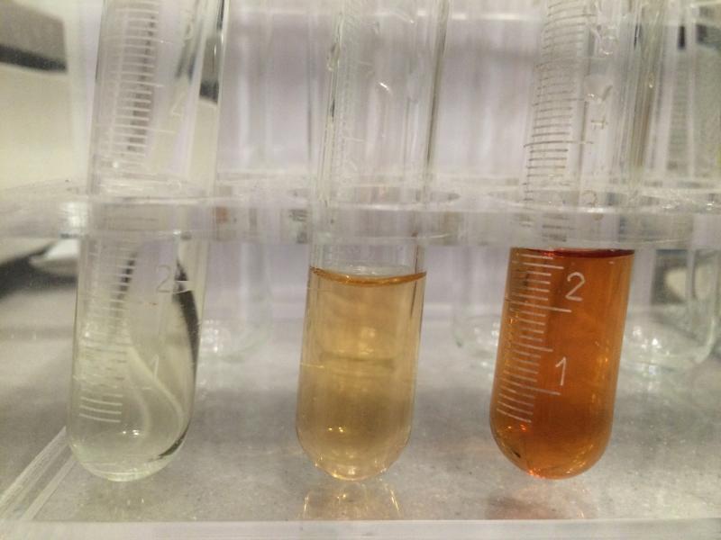 konzentration ionensorten schwefelsäure